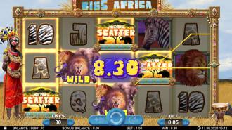 Big 5 Africa gallery image 5