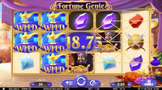 Fortune Genie gallery image 2